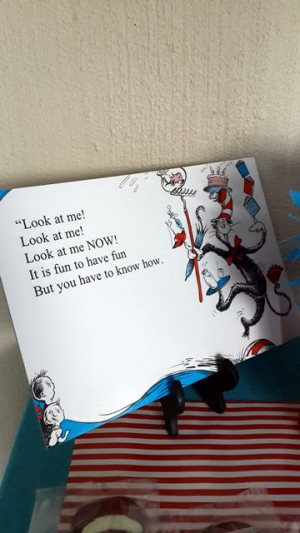 Cat in the Hat Story Book Quotes