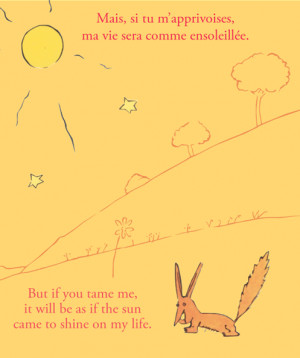 Related Pictures the little prince quote