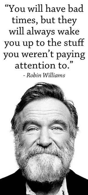 Robin Williams Quotes Sayings Changes World