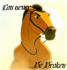 The Spirit That Can Never Be Broken... - spirit-stallion-of-the ...