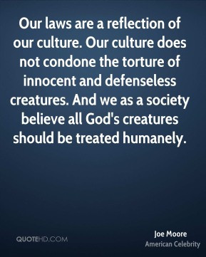 Joe Moore - Our laws are a reflection of our culture. Our culture does ...