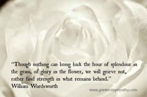 Wordsworth quote on white rose