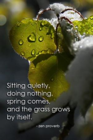 ... ZenGo - Zen Quotes, Inspirational Quotes and Wallpaper para iPhone