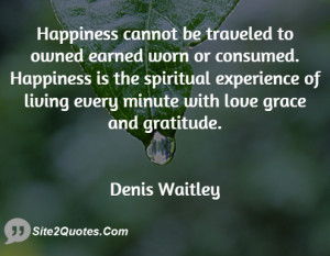 Happiness cannot be traveled to owned earned worn or consumed ...