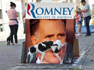 Meme time... post your favorites-romney-dog-pee-jpg