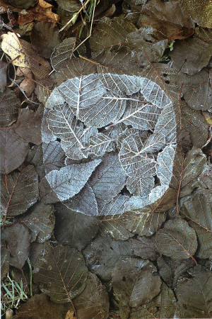 Andy Goldsworthy is creative inspiration for us. Get more photo about ...