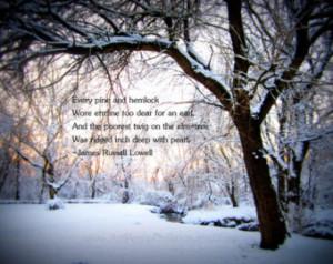 Snow In Woods Quotes. QuotesGram