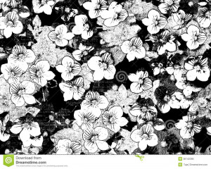 Floral Border Black And White