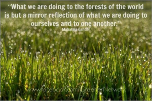 Quotes on environment, wise, best, sayings, forest
