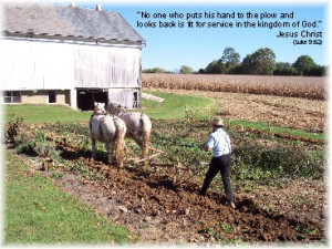 ... row you focus on the furrow or previous row as you continue plowing