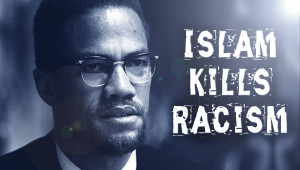 Displaying 19> Images For - Malcolm X Quotes On Racism...