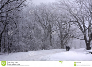 ... walking in a beautiful snow cover foggy winter park holding hands