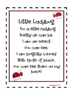 Ladybug Poetry And Songs