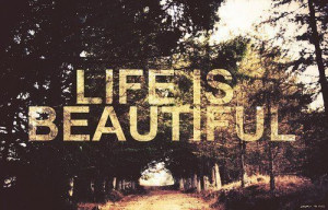 Life Is Beautiful Beauty Quotes