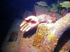Found Feet Under Water...
