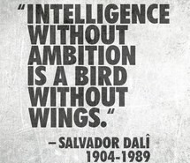 ambition, bird, intelligence, quotes, wings