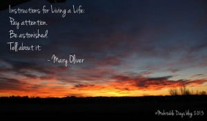 Go Back > Gallery For > Beautiful Sunrise Scenery With Quotes