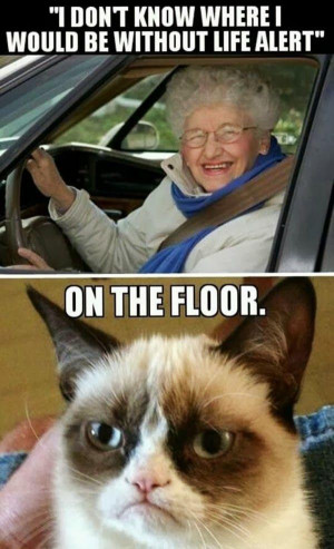 ... Old People Memes   Funny Cats   Top 49 Most Funniest Grumpy Cat Quotes