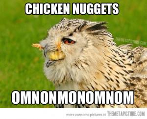 Funny photos funny hawk eating chicken