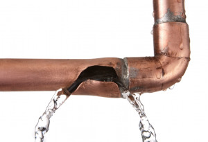 sinks and around the outside of your home for minor leaks in plumbing ...