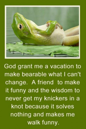 Advice from a frog
