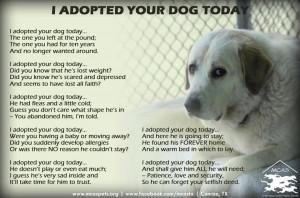 Pet Adoption Poem