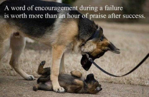 Wise Quotes Of Encouragement