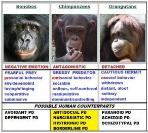 Core Behaviors Of The Antagonistic Cluster Of Personality Disorders