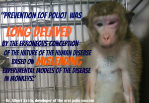 Animal Testing Quotes