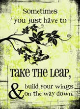 Sometimes you just have to take the leap and build your wings on the ...