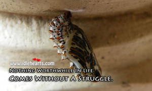 ... was teaching his students how a caterpillar turns into a butterfly