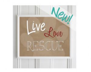 Cat Rescue Quotes Animal rescue quote - pet