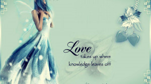 Fairy with quotes love takes up where off HD Wallpaper