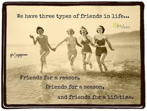 Three types of friends....