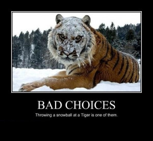 Bad Choices Motivation Poster