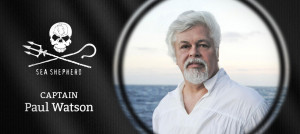 Paul Watson Pictures