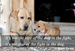 ... size of the dog in the fight, it's the size of the fight in the dog