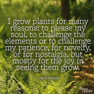 ... share some interesting quotes about life as it applies to the garden