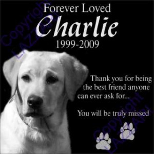 Dog Cat Memorial 12x12 Engraved Granite Grave Marker Plaque G