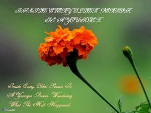 Elderly Day Quotes