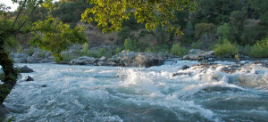 Troublemaker Rapid on the South Fork of the American River
