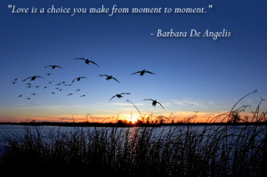 barbara de angelis quotes