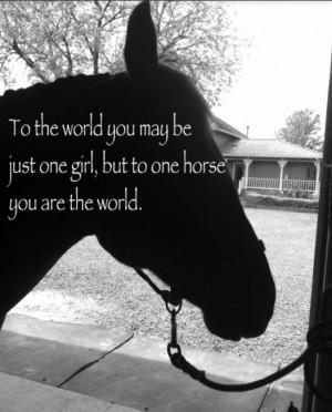 Horse Quote. Dewy. Quarter Horse.