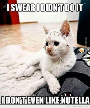 Funny Picture - Cat i swear i didn't do it i don't even like nutella