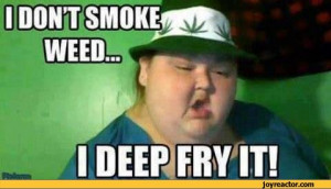 don't smoke weed i deep fry it / weed :: funny pictures :: stoner ...