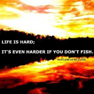 30 Great Fishing Quotes | WetaWorm