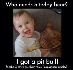 Pit bull quotes and sayings