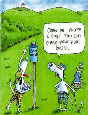 funny golf images funny golf images g 106 small super funny cute ...