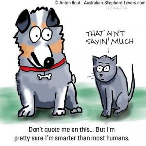 funny australian quotes