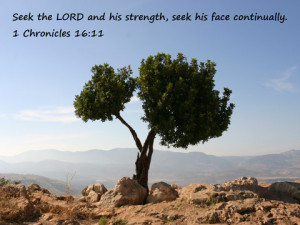 Bible Verses About Strength|Bible Quotes On Strength.
